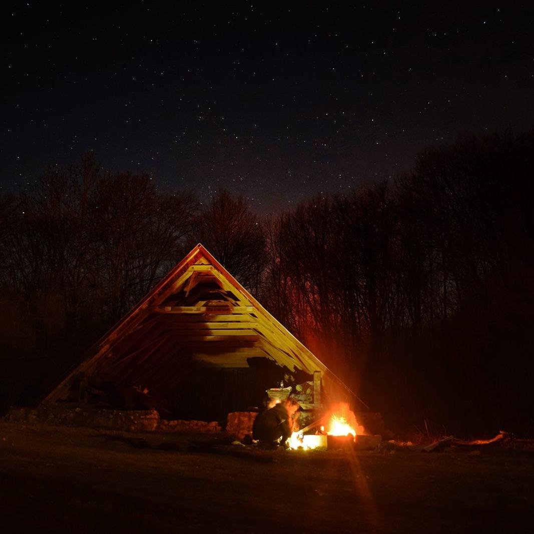 Night in the wilderness
